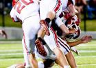 Opportunities Lost: Dogs Lose To Tuttle, 28-7